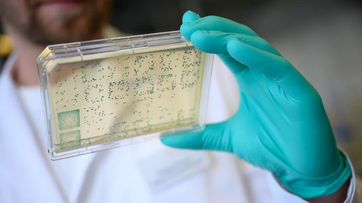 Coronavirus: Durchbruch!  Forscher entdecken den Ursprung von Sars-CoV-2 - und haben jetzt eine Nachfrage